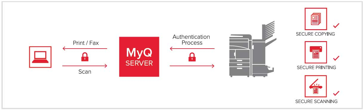 funzionamento-server-myq